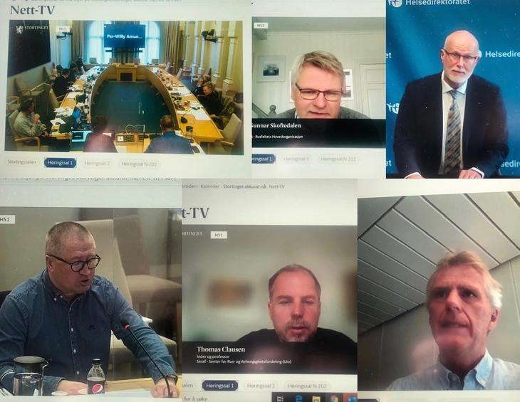 Et utvalg av aktørene som avla høringsinnspill i Stortinget 16. mars